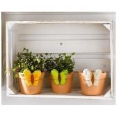 """Dekoratyviniai vazonėliai """"Pavasario drugeliai"""", 3 vnt."""