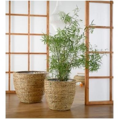 Pinti vazonai augalams, 2 vnt